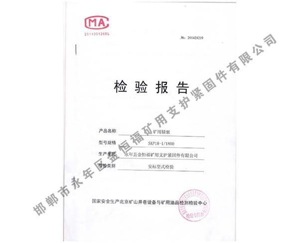 检验报告 (1)
