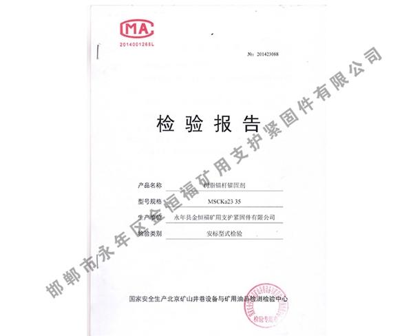 检验报告 (2)