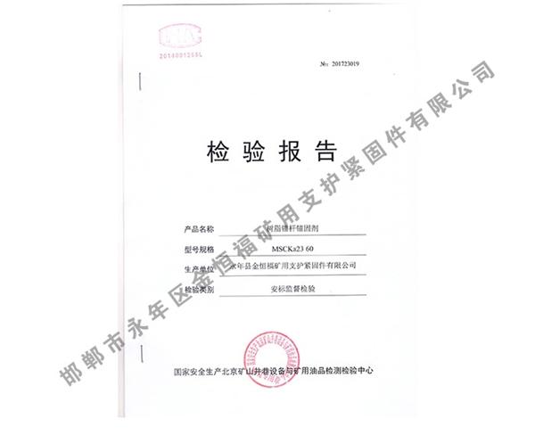 检验报告 (3)