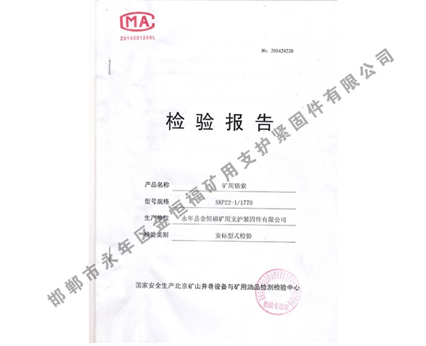 检验报告 (4)