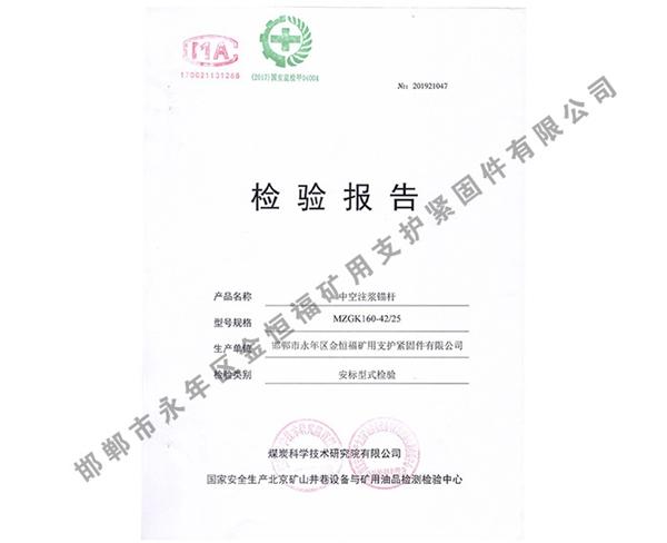 检验报告 (6)