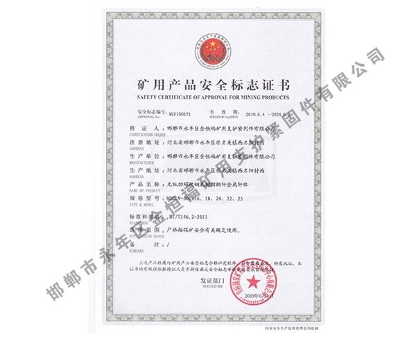 雷竞技Raybet官网产品安全标志证书 (5)