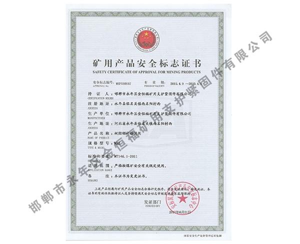 雷竞技Raybet官网产品安全标志证书 (9)