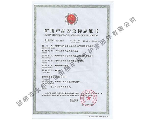 雷竞技Raybet官网产品安全标志证书 (10)